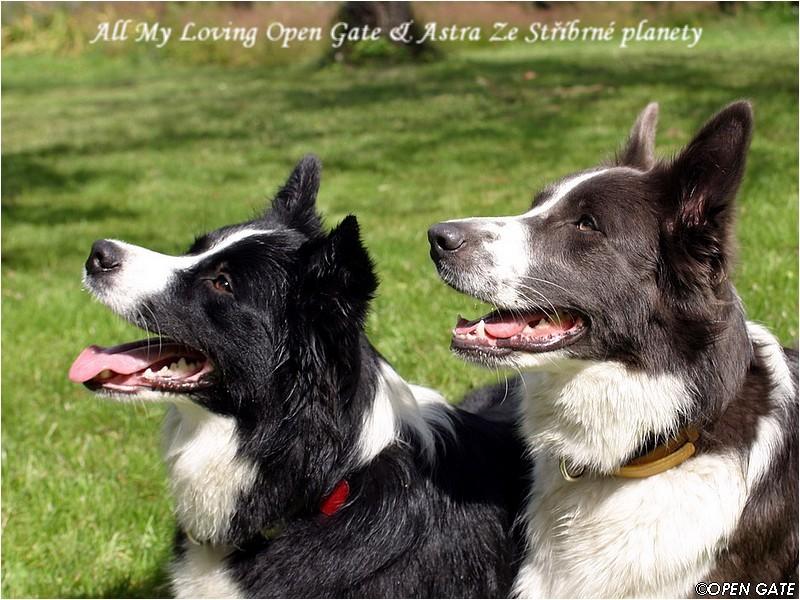 All My Loving OG - Aisha & Astra Ze Stříbrné planety