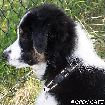 BOLD AS LOVE Open Gate - 10 týdnů / 10 weeks, 09. 05. 2009, photo © Ivana Pallová