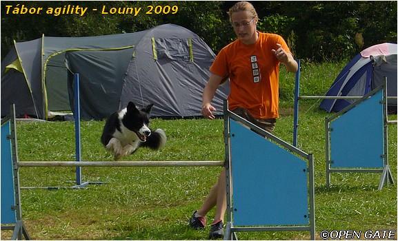 Jamie - agility tábor Louny 2009, 25. 07. 2009, foto © Martina Jíchová