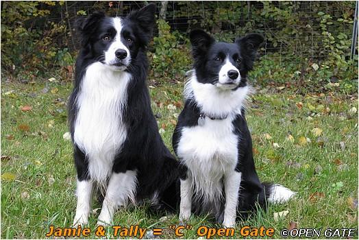 Tally & Jamie, 08. 11. 2009, foto © Jana Malinská