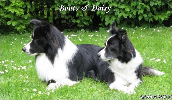 Boots & Daisy - 13. 05. 2010, photo © Jana Malinská